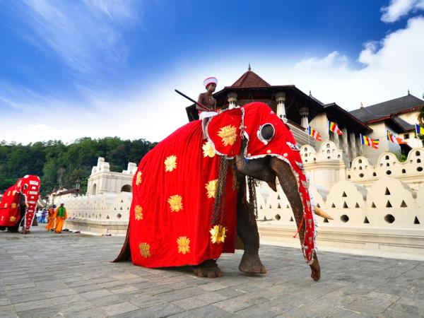 Luxury vacation in Sri Lanka