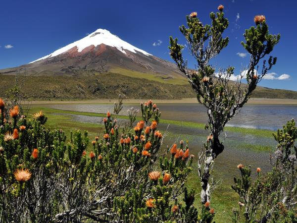 Ecuador by train vacation, culture and nature