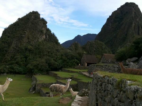 Peru in 11 day itinerary