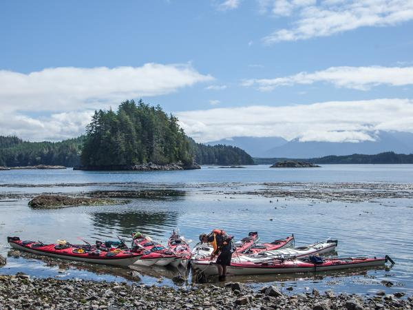 Kayaking with Orcas in British Columbia