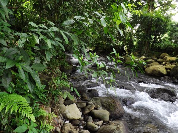 Costa Rica highlights vacation