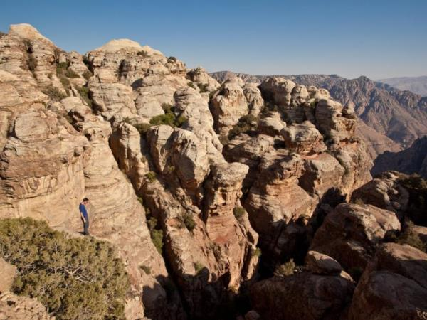 Highlights and nature tour in Jordan