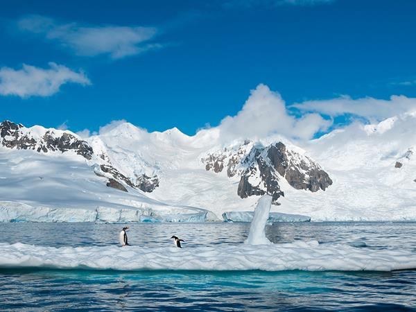Antarctica, Weddell Sea Quest vacation