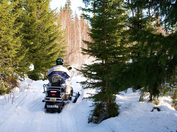 Swedish Lapland new year vacation, northern lights and activities