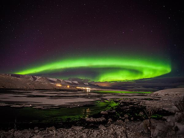 Iceland whale watching and Northern Lights vacation - CZA