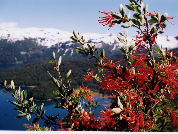 Self drive Patagonia vacation including Mapuche culture