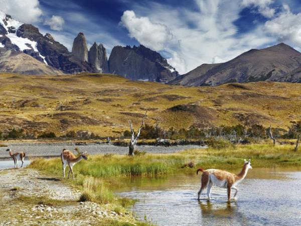 Chile tailor made vacation, north to south