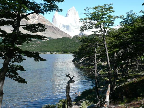 Patagonian glaciers vacation with ice trekking