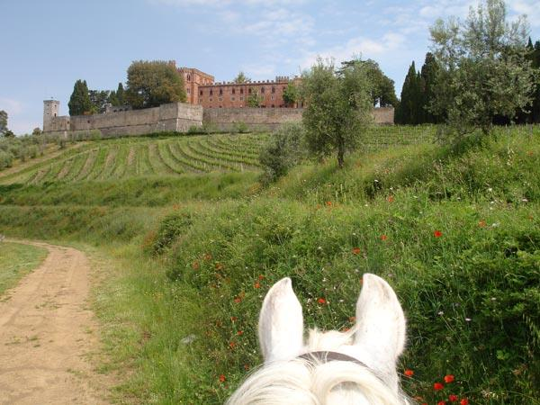Short break riding vacation in Tuscany