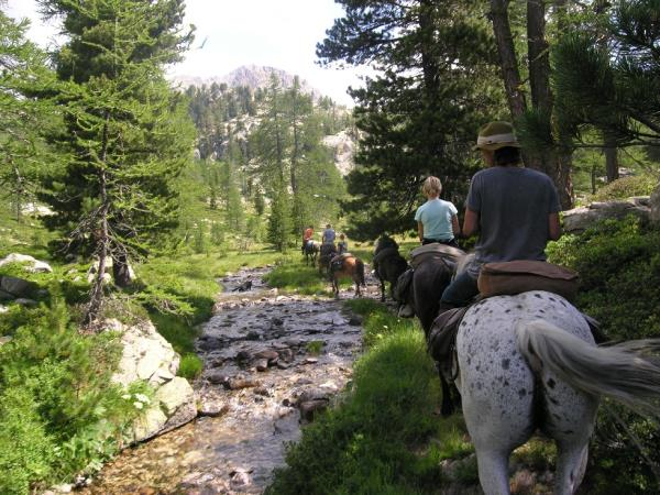 Horse riding vacation in the Mercantour