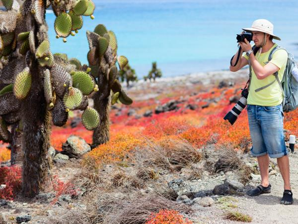 Galapagos & Ecuador tailor made vacation