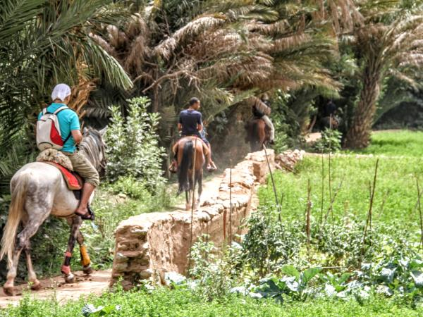 Horse riding vacation in Morocco