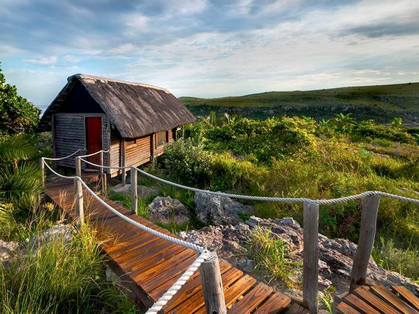 South Africa wild coast wildlife vacation