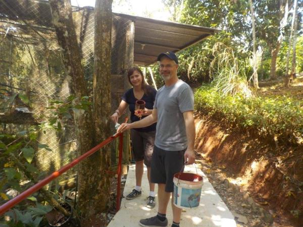 Wildlife rescue volunteering in Costa Rica