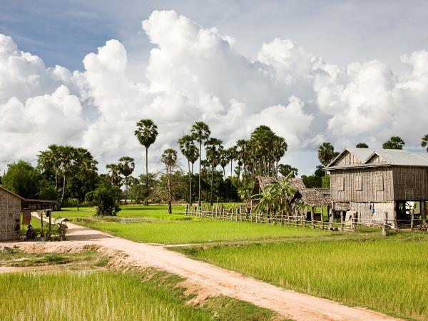 Cambodia vacation, tailor made