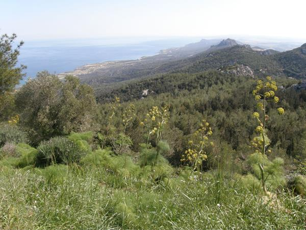 Besparmak trail walking vacation in Cyprus
