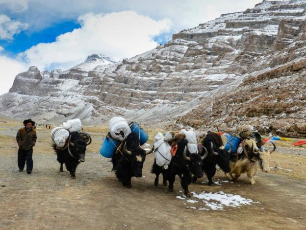 21 days Tibet 4WD in depth tour