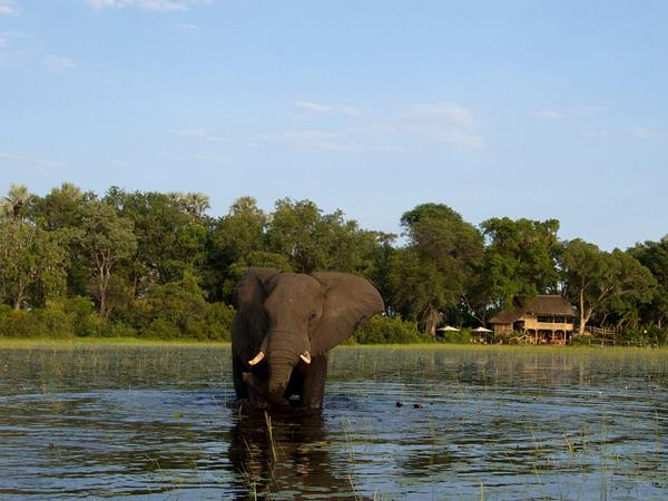 Zimbabwe & Botswana self drive vacation