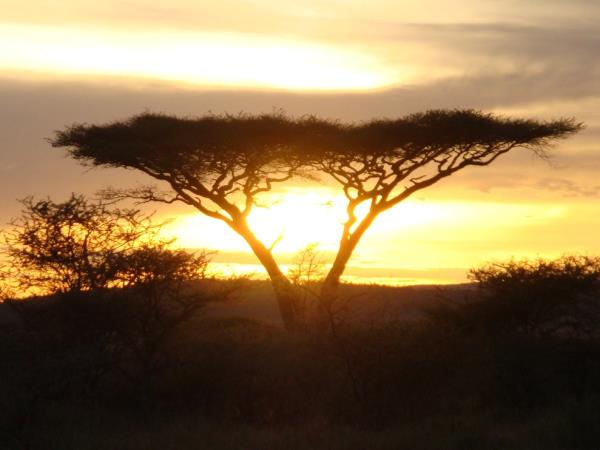 Classic Tanzania safari and beach vacation