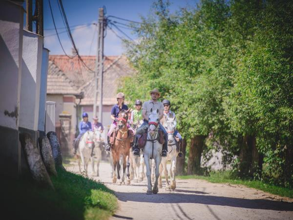 Horse riding vacations in Transylvania