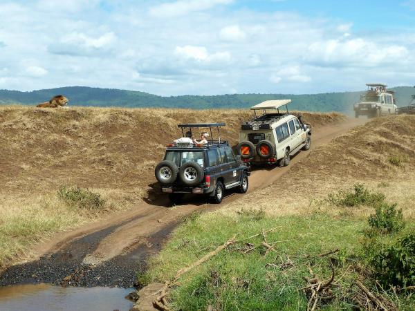 Tanzania safari vacation, tailor made