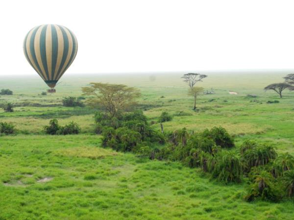 Serengeti safari vacation, Tanzania