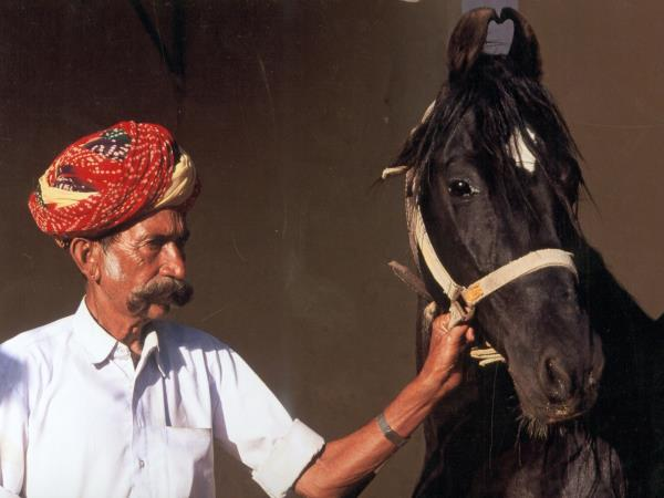 India horse riding vacations