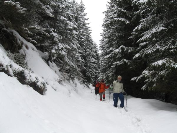 Carpathian Mountains snowshoeing vacation, Romania