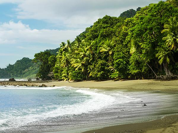Family vacation to Costa Rica, 8 day wildlife and beach