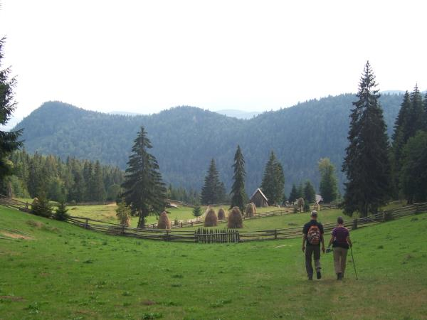 Guided hiking vacation in Romania