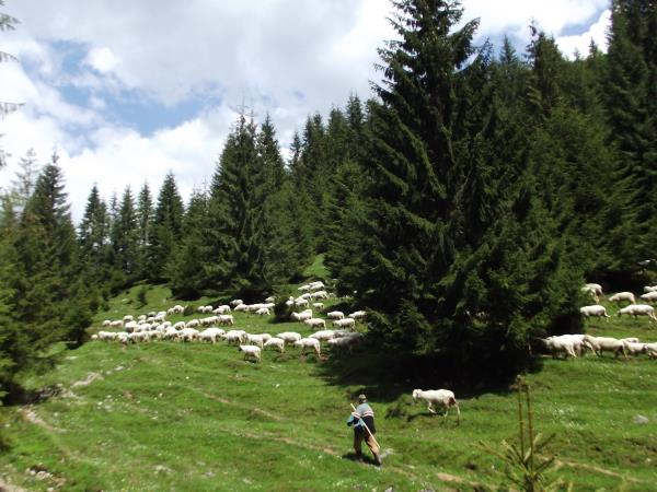Romania hiking vacation