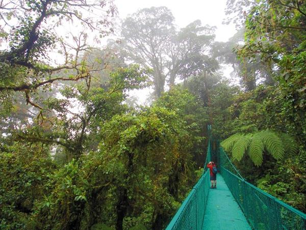 Costa Rica tailor made tour, in depth