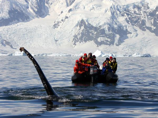 Antarctic Peninsula expedition cruise