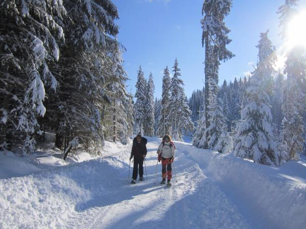 Romania ski touring vacation