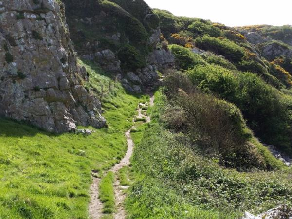 Wales's Gower Peninsula self guided walking vacation