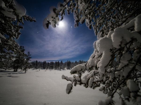 Luxury wilderness Northern Lights holiday, Finland