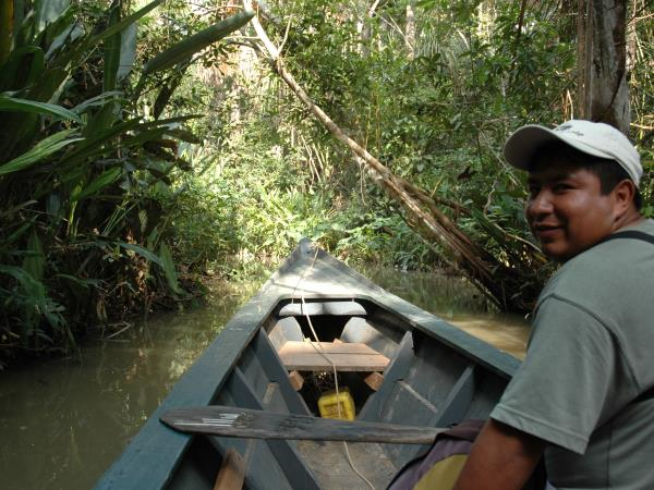 Wilds of Tambopata tour, Peru