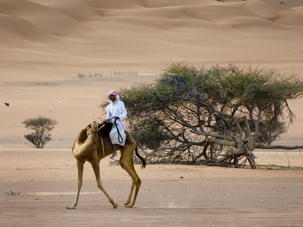 Luxury culture holiday in Oman