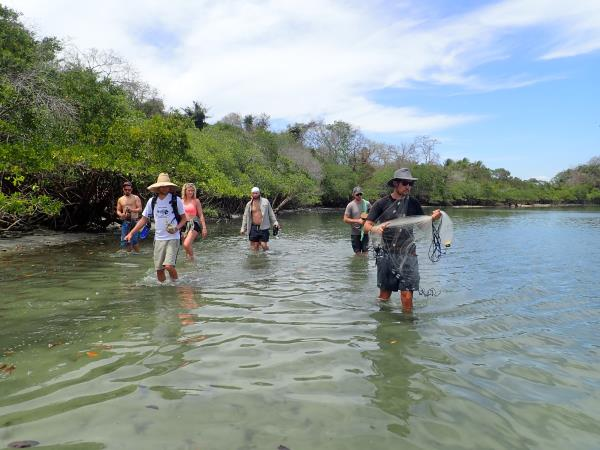 Desert island survival adventure, Panama