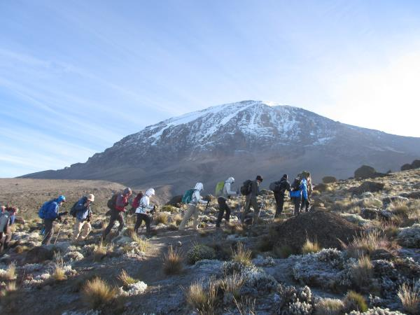 Kilimanjaro Machame Trek, 8 Days
