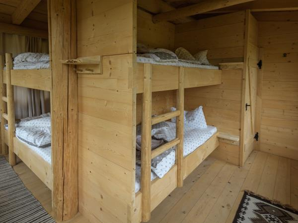 Romania wildlife holiday stay in wildlife hides