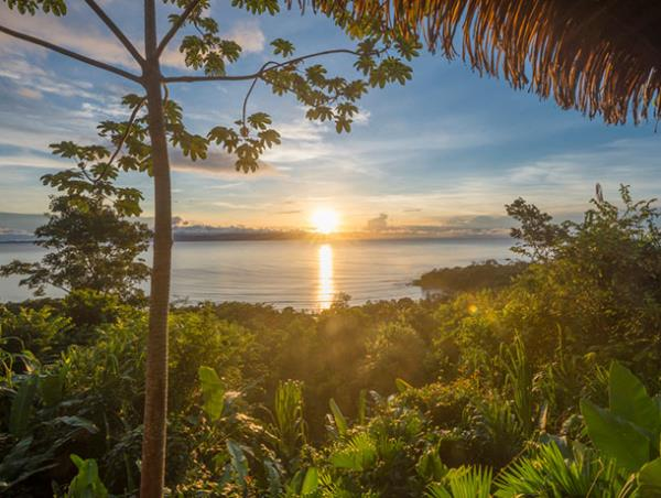 Tailor made Costa Rica wildlife vacation