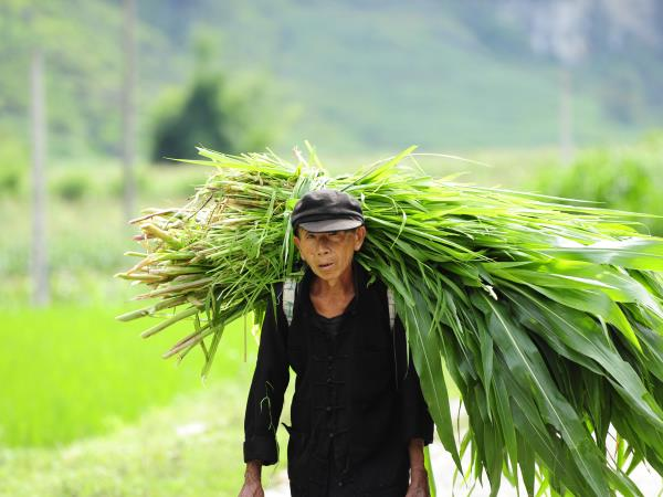 Vietnam off the beaten track vacation