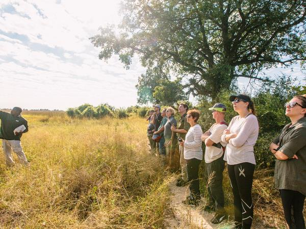 Botswana highlights small group tour