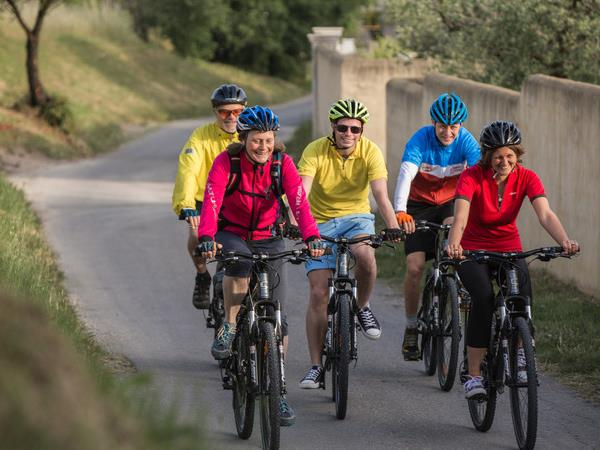 Cycling vacation in Provence