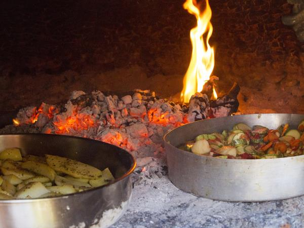 Nutritional food vacation in the Peloponnese