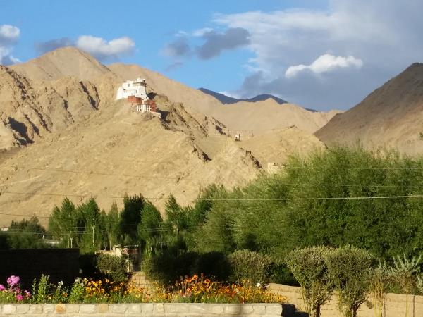 Ladakh mountains trekking adventure