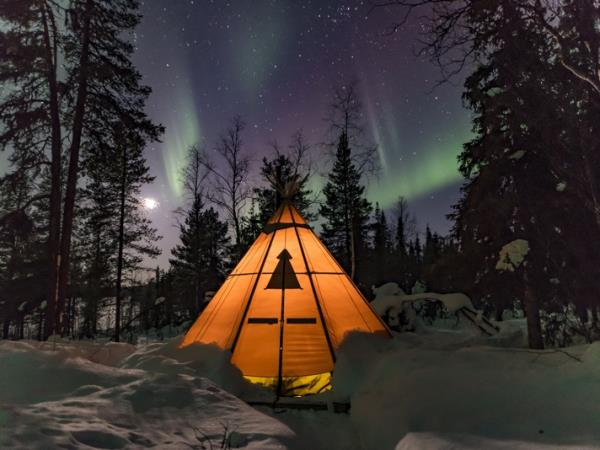 Lapland Northern Lights and moose tracking vacation