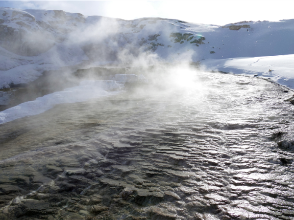 Yellowstone winter walking and wildlife holiday