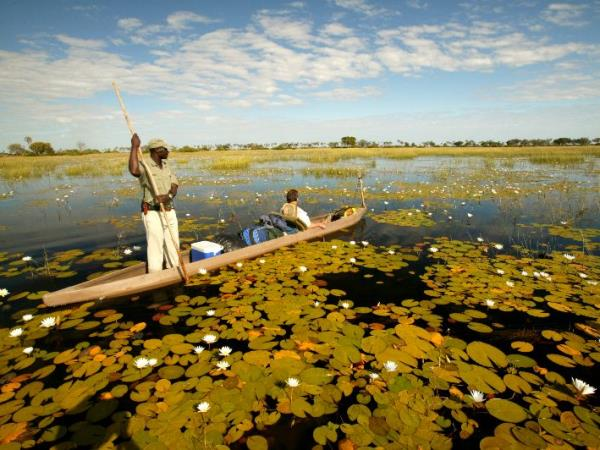 Botswana luxury camping safari, small group
